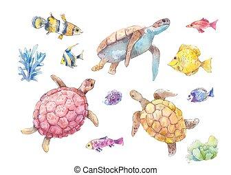 Set of sea turtles, marine fish and algae watercolor - Set...