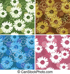 Set of seamless patterns with daisies/camomiles