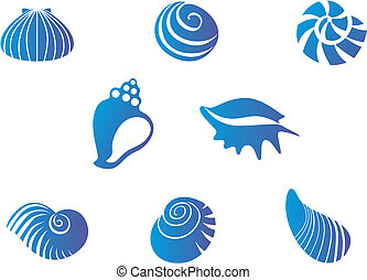 Set of seashells - Set of blue seashells isolated on white