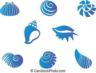 Set of blue seashells isolated on white