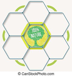 Set of seven hexagons for your text and tree symbol