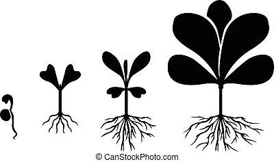 Set of silhouette plants