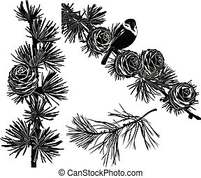 Set of silhouettes of fir branches with cones