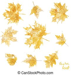 set of silhouettes of maple leaves in watercolor, vector illustration