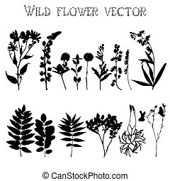 Set of silhouettes of wild flowers and leaves on a white...