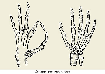 set of Skeleton hand