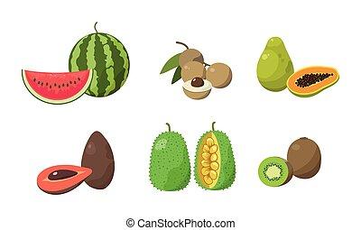 Set of sliced watermelon, longan, papaya, avocados, ...