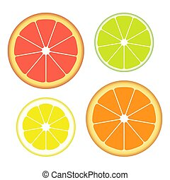 Set of slices of different citrus fruits isolated on white background. Juicy fruit. Vector Illustration.