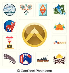 Set of spartan shield, bird nest, scorpions, democratic party, chameleon, pinpoint, best anniversary, norse, french bulldog icons