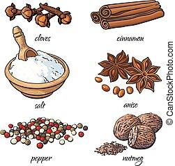 Set of spices - cinnamon, pepper, anise, nutmeg, salt, clove