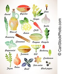 Set of spices - Set of various spices and herbs for cooking