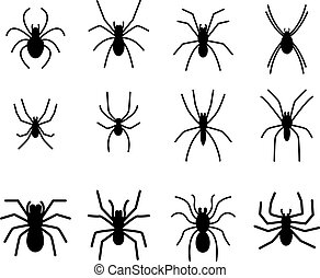 Set of spider silhouette icon and symbol