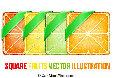 Set of Square fruits slices with Green ribbon. Vector Illustration.