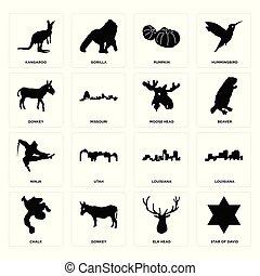 Set of star david, elk head, chalk, louisiana, ninja, moose donkey, pumpkin, kangaroo icons