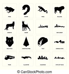 Set of state texas, colorado, train, taco, wolf face, , cheetah, frog, frog icons