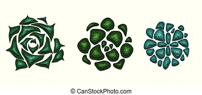 Set of succulents cut out of paper in green color with a top view on white background. Objects separated from background.