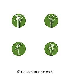 Set of Sugar cane Logo Template vector symbol