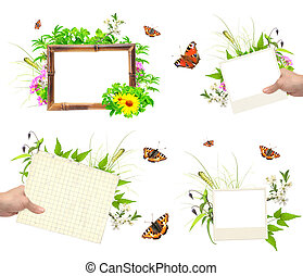 Set of summer frames with photo, green leaves, flowers and insec