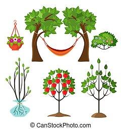 Set of summer plants in gardening concept. Apple tree