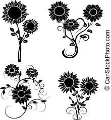 set of sunflowers silhouette