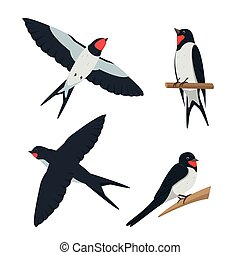 Set of swallows in different poses.