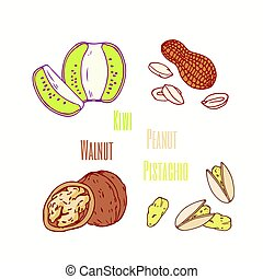 Set of sweet toppings kiwi, peanut, walnut and pistachio. Hand drawn food