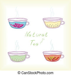 set of tea cups with natural tea. vector illustration.