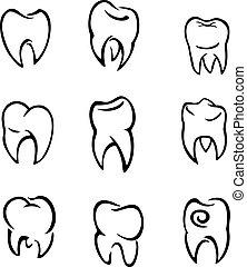 Set of teeth for deantal and medical design. Vector...
