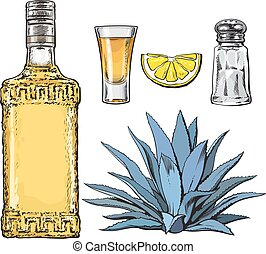 Set of tequila bottle, shot, salt mill, agave and lime - Set...