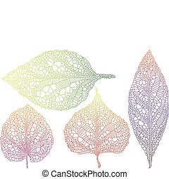 set of textured autumn leaves, vector