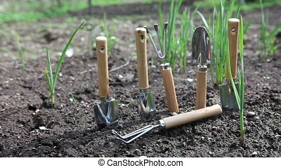 Set of the garden manual tool on a bed with fresh green shoots of onions.