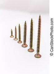Set of the screw
