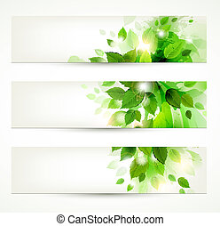 green leaves - set of three banners with fresh green leaves