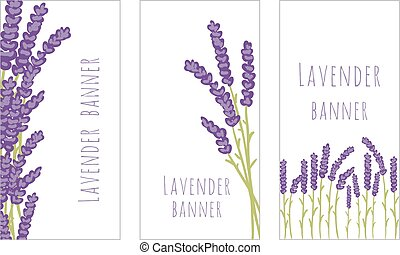 Set of three lavender banners - Vector floral set of colored...