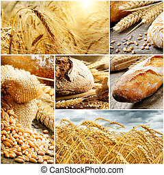 Set of traditional bread, wheat and cereal. Collage