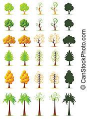 Set of Tree