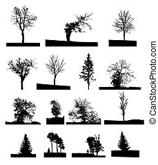 Set of Tree Isolated on White Background. Vector Illustration.