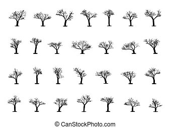 Set of tree silhouettes on a white background. Vector illustration.