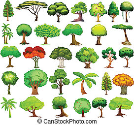 Set of trees - Illustration of different kind of tree