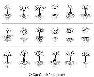 Set of Trees on white background. Vector Illustration and concept pictogram.
