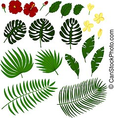 tropic flowers and palm leaves