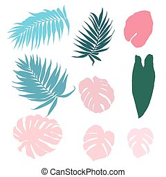 Set of tropical leaves isolated design elements
