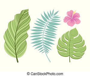Set of tropical leaves. Isolated on white background. Vector illustration.