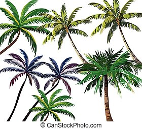 Set of Tropical Palm Trees