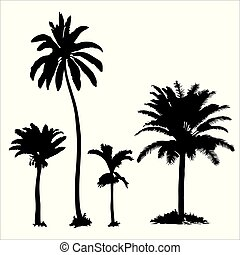 Set of tropical palm trees with leaves, black silhouettes isolated on white background.