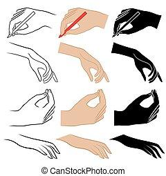 Set of twelve human hands