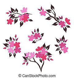 Set of twigs with sakura flowers isolated on white background Vector graphics