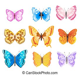 set of various colorful butterflies