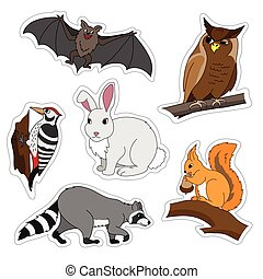 Set of various cute animals, forest animals. Woodpecker on a branch, owl, bat, Bunny, squirrel, raccoon