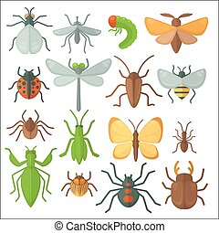 Set of various insects: butterfly, fly, beetle, dragonfly, spider, bee and ladybug.